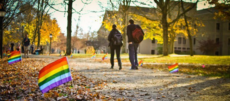 Gay-Straight Allies: Are They Good or Bad for the LGBT Community?