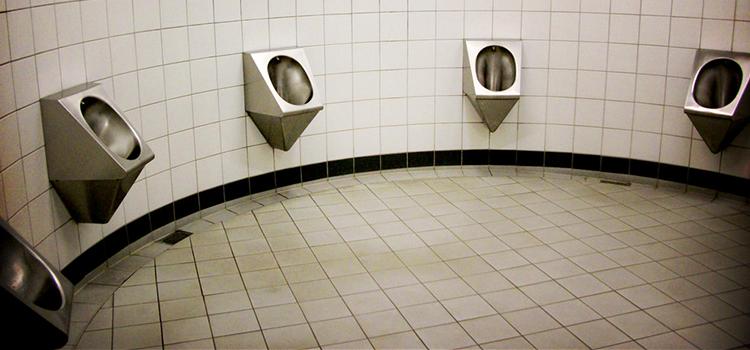 Cottaging toilets